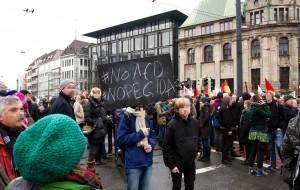 "Schild auf der Demonstration ""Alternativen zu Deutschland"" am 31. Januar 2015 (CC-BY 2015 Sebastian Raible / @FreakkaerF / Stadtkontext.de)"